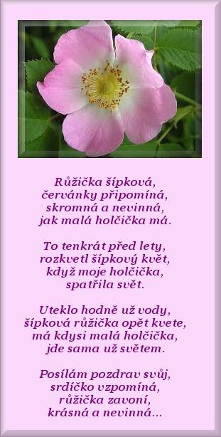 sipkova-ruze.jpg